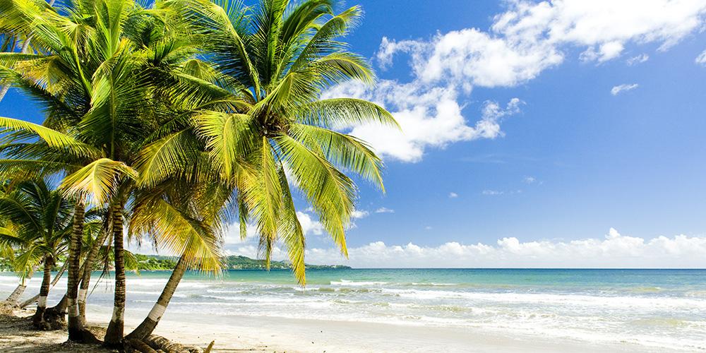 Naturally Fiji